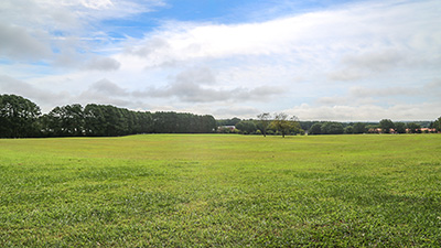 Landscape image of the Big Field