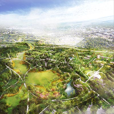 The Meadow Rendering